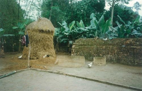 HoangDieu_1996_2