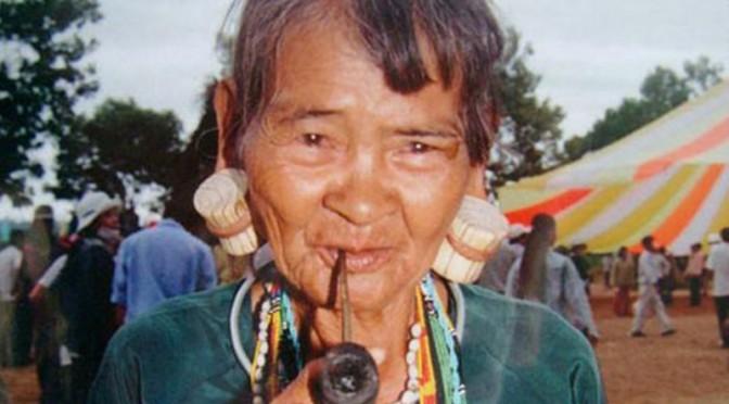 Noellie Bon : Le Stieng, une langue en danger d'Asie du Sud-Est – Approches socio-linguistique et descriptive